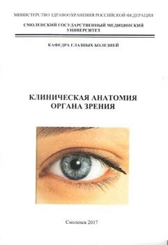 Клиническая анатомия органа зрения - фото 4888