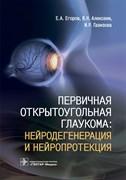 Первичная открытоугольная глаукома. Нейродегенерация и нейропротекция